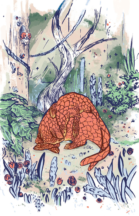 pangolin-for-website